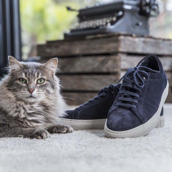 sneakers navy chat